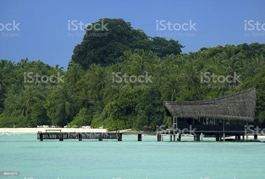 Escola de mergulho na ilha tropical foto royalty-free