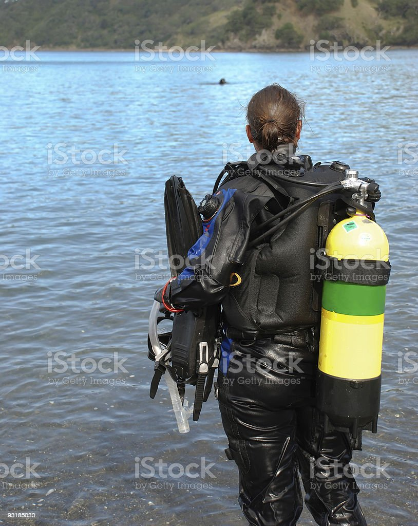Dive supervisor looks on stock photo