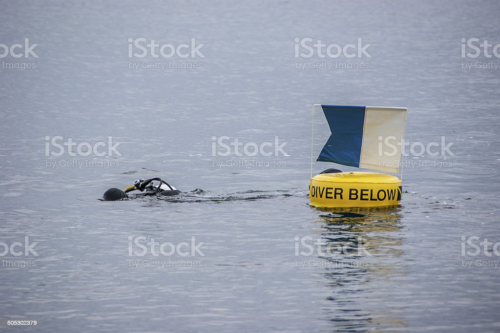 Diver Below royalty-free stock photo