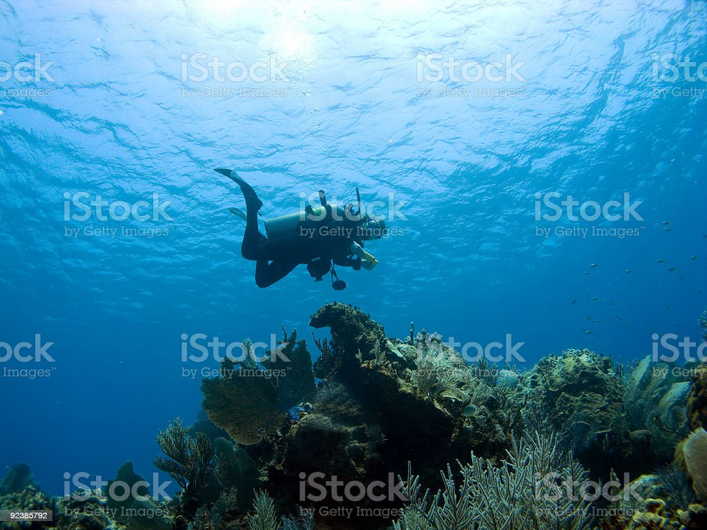 Diver descending on a Cayman Island Reef stock photo