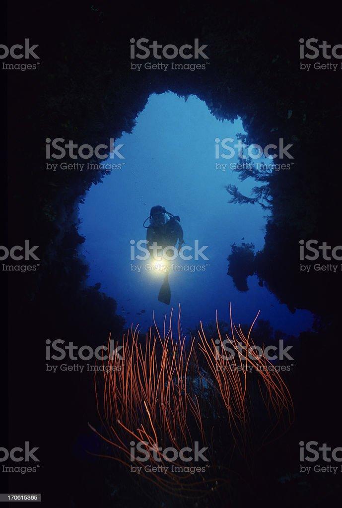 Diver Exploring Underwater  Cave stock photo