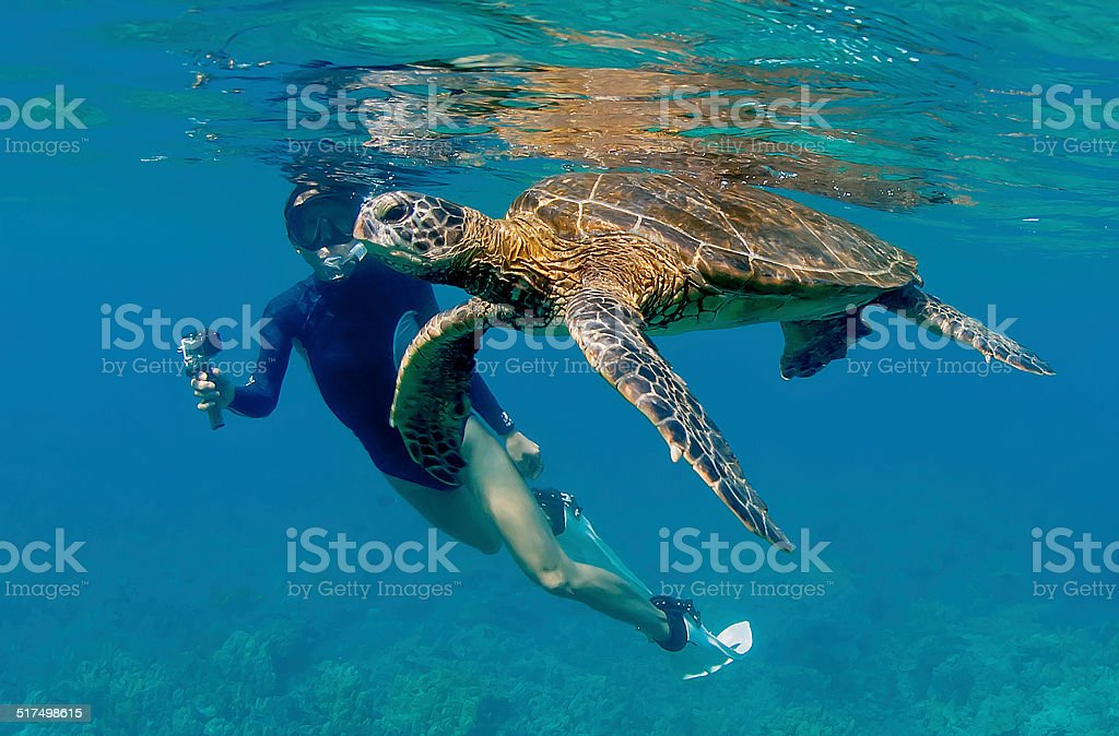 Diver Filming Sea Turtle in Open Water stock photo