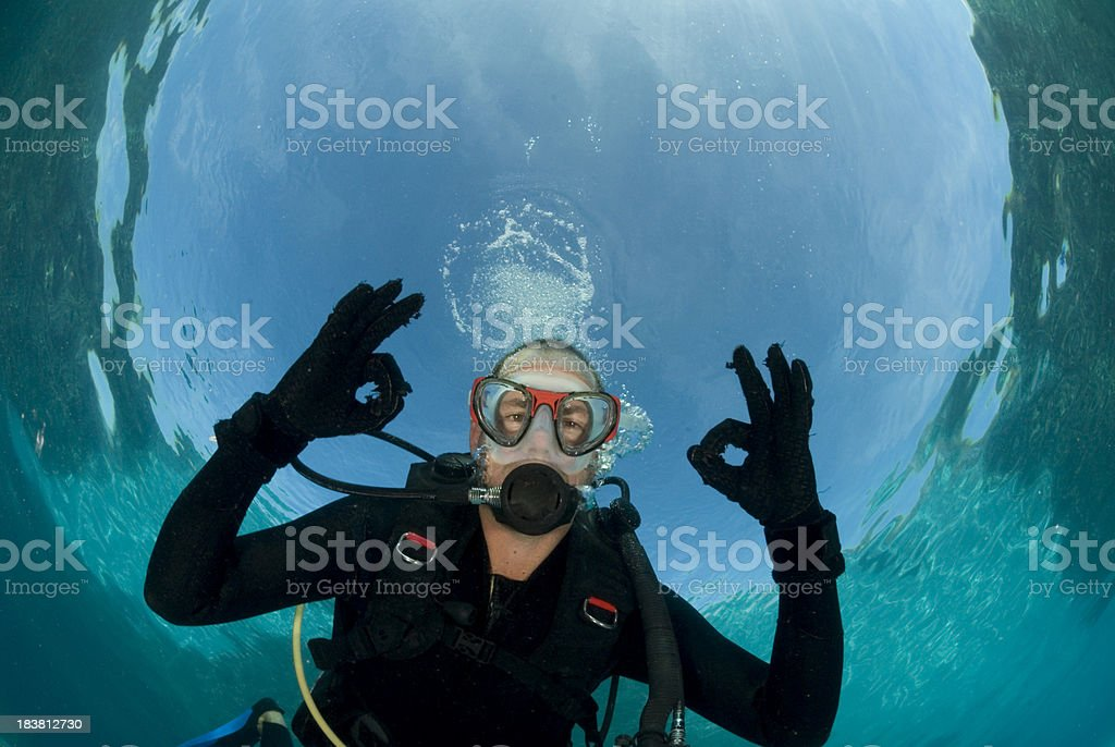 diver gives ok signal stock photo