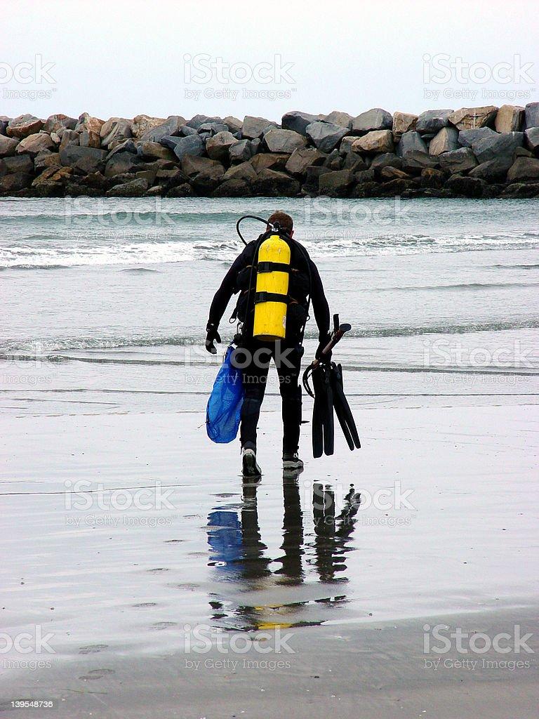 Diver Heading to Sea royalty-free stock photo