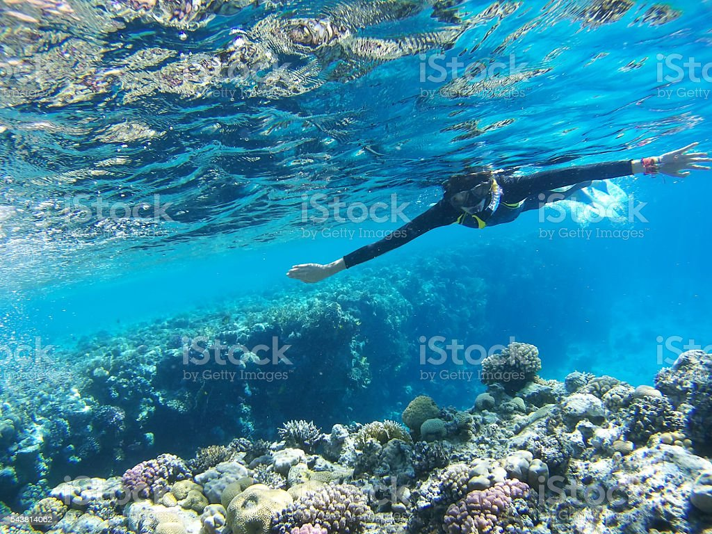 Diver in Deep Blue Sea stock photo