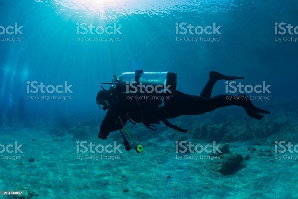 Diver in shallow water stock photo