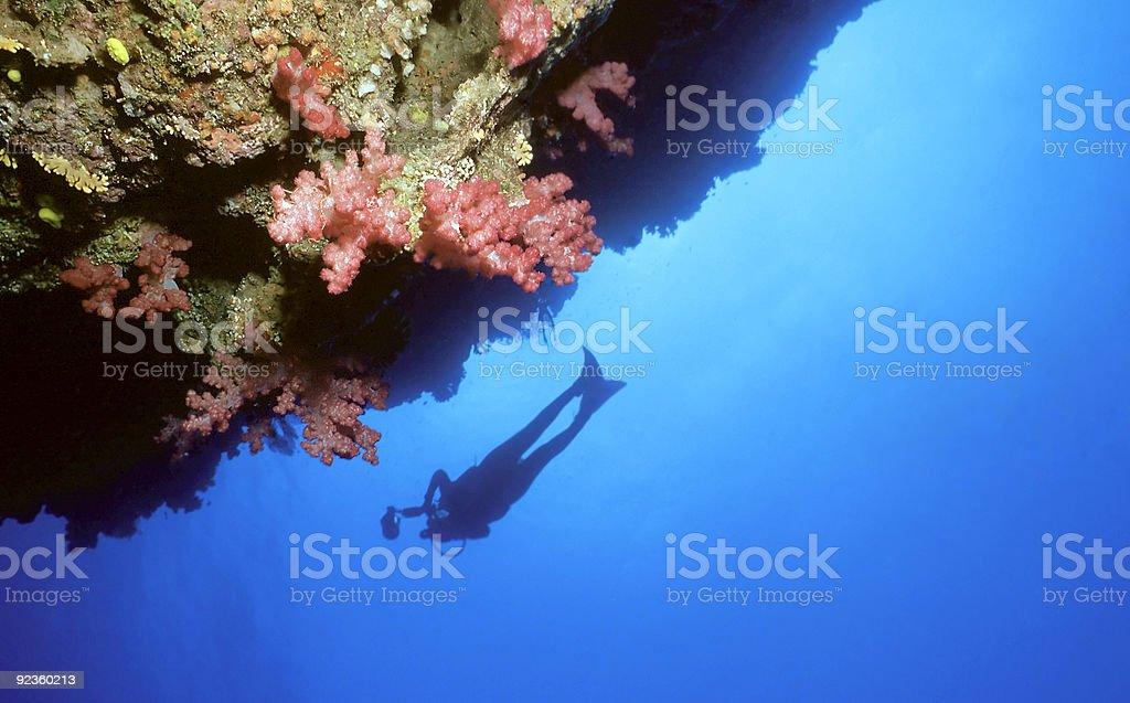 Plongeur n mur photo libre de droits