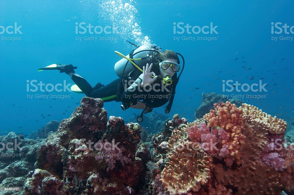 diver ok stock photo