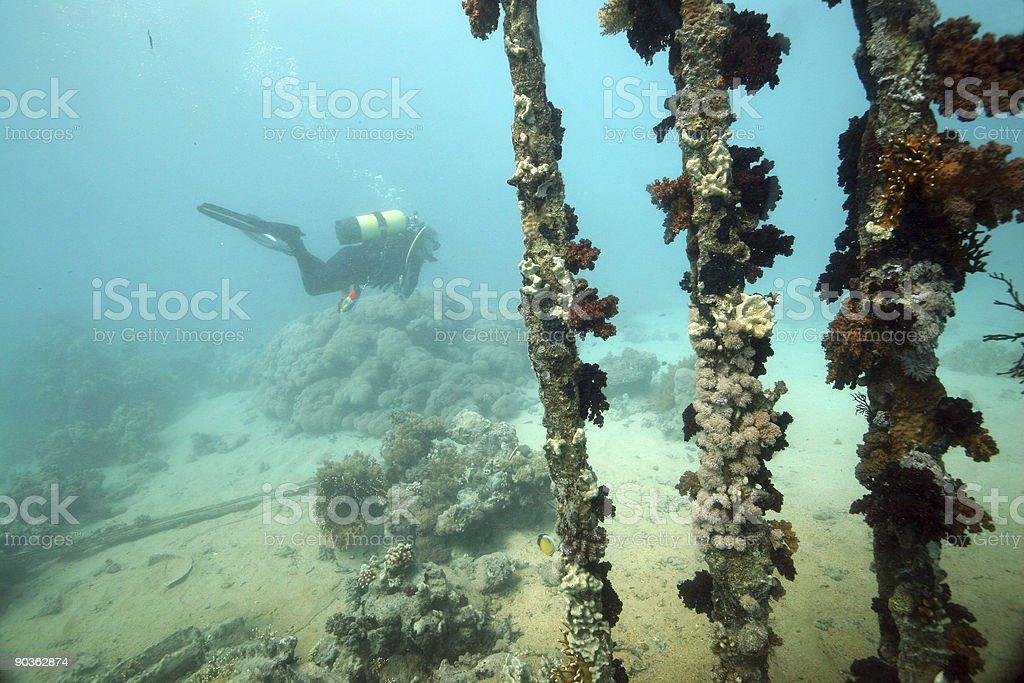 Plongée sur épave photo libre de droits