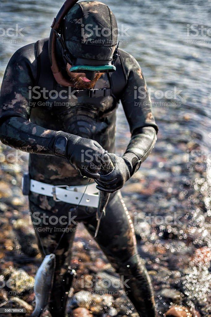 diver stock photo