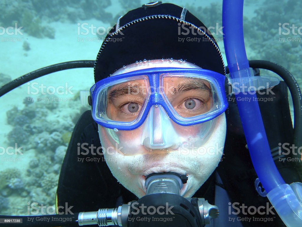 diver royalty-free stock photo