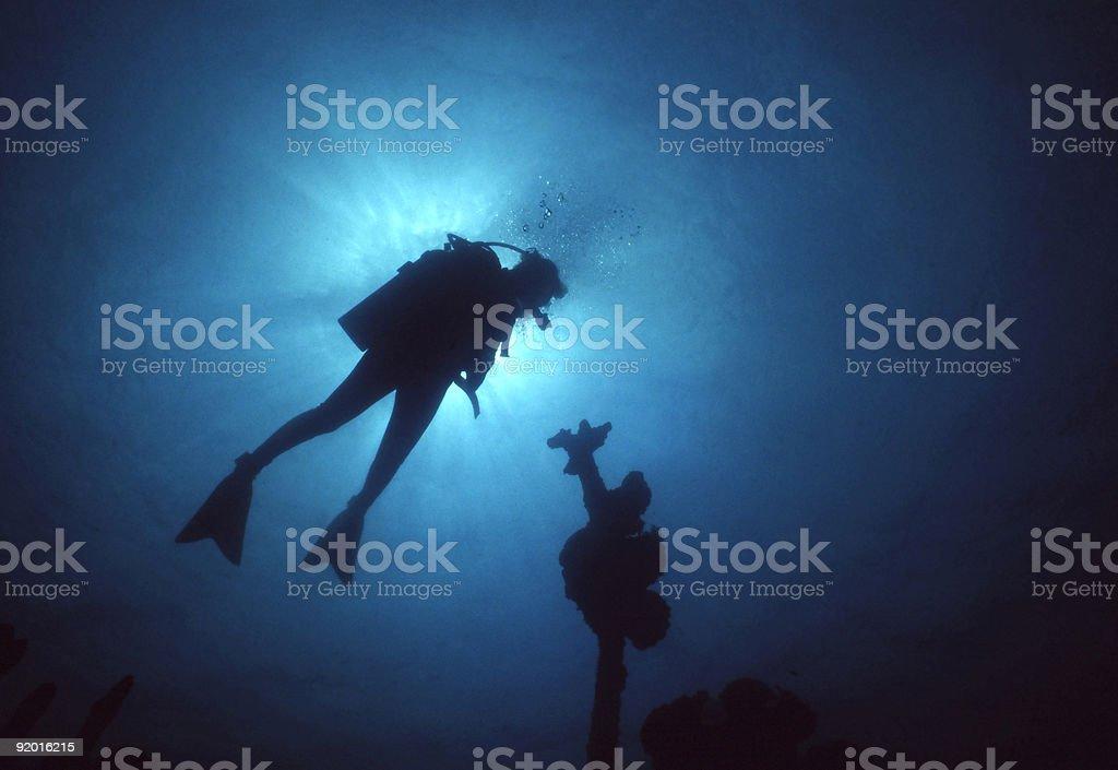 Silhouette du plongeur photo libre de droits