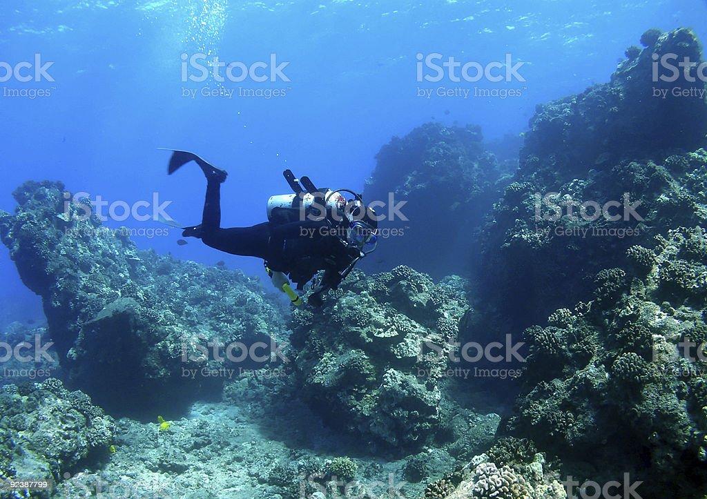 Diver swimming through Reef stock photo
