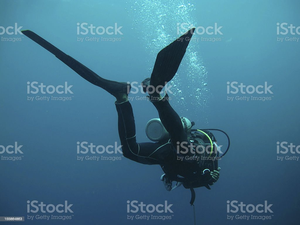 diver under water royalty-free stock photo