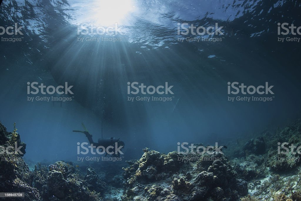 A diver underwater at a reef site stock photo