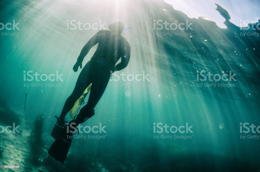 Diver underwater stock photo