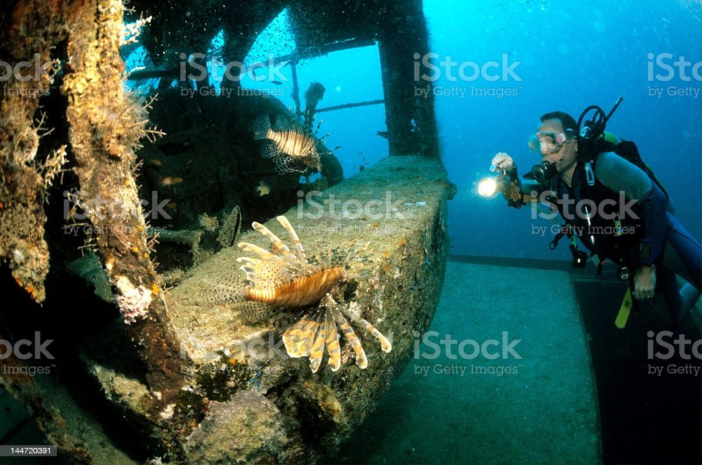 diver with lionfish stock photo