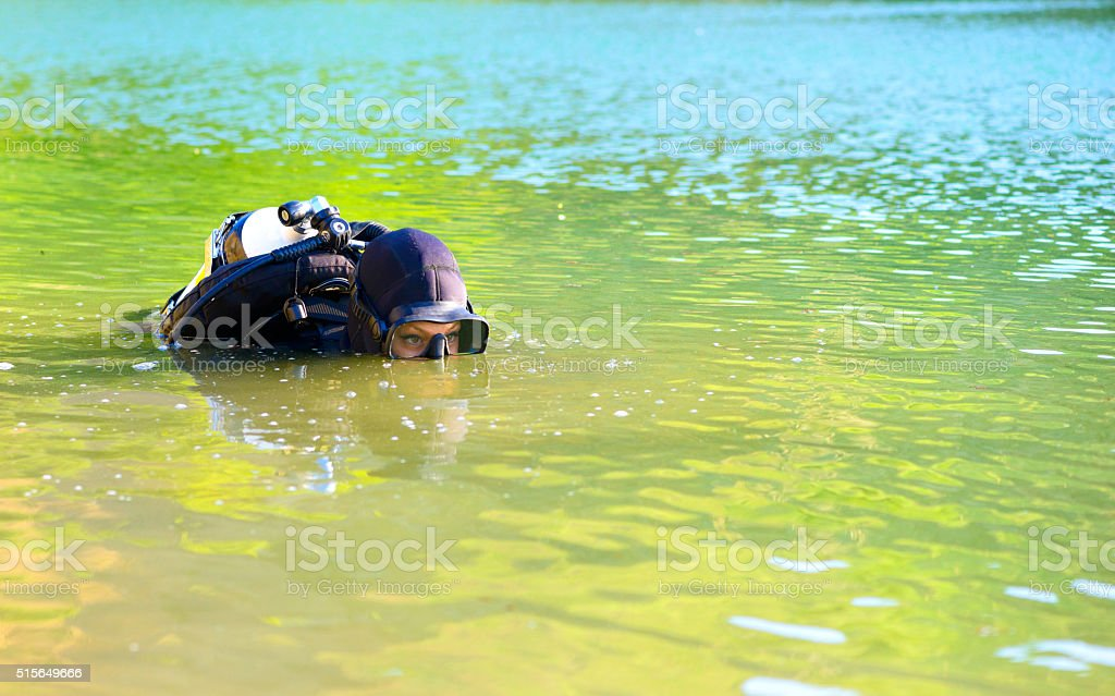 diver woman in the water stock photo