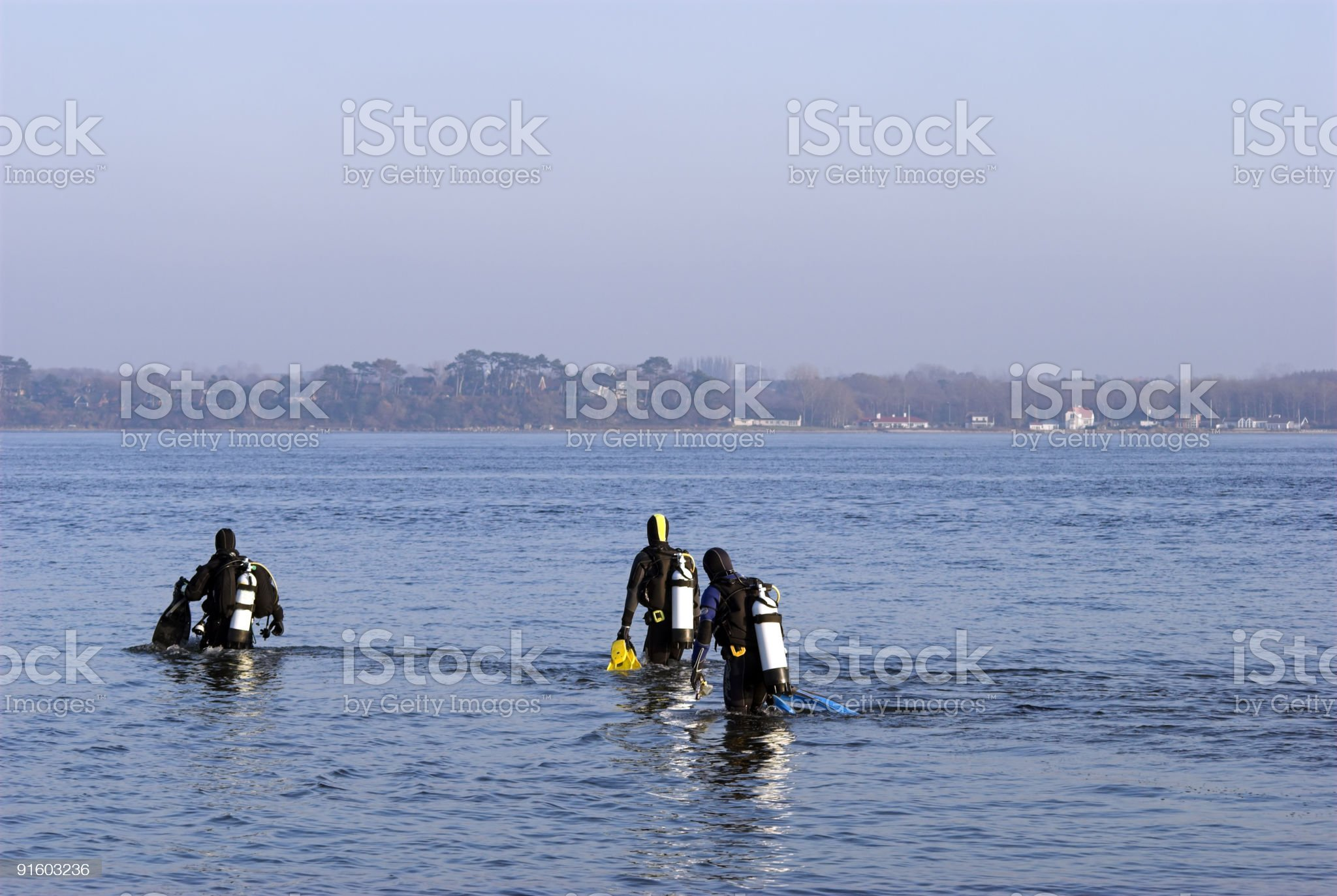 Divers enter the water royalty-free stock photo