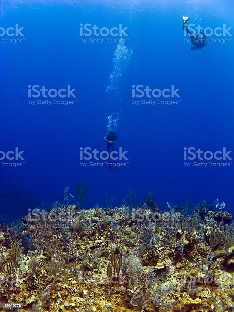 Divers off the wall in Cayman Brac stock photo