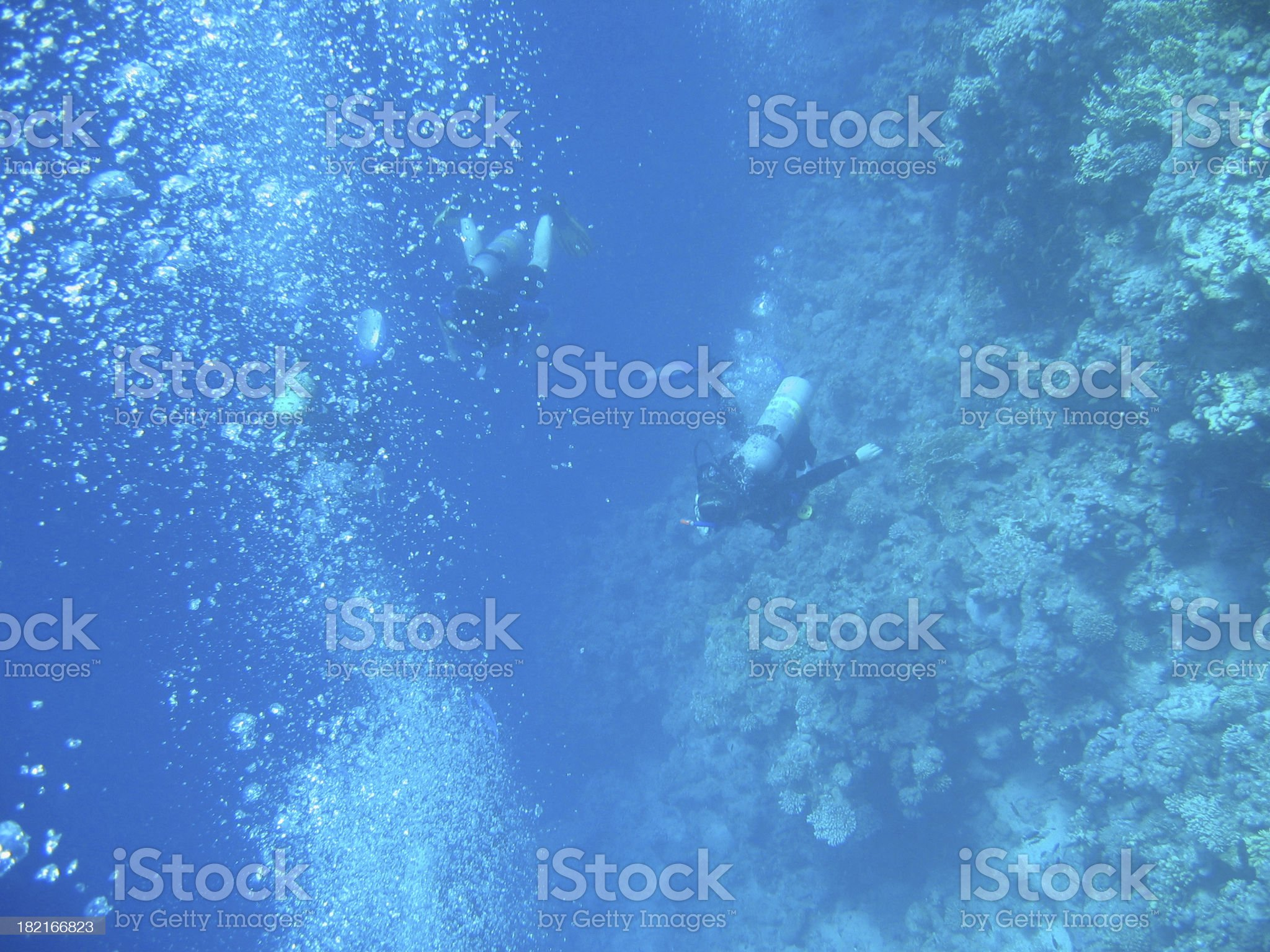 Divers royalty-free stock photo
