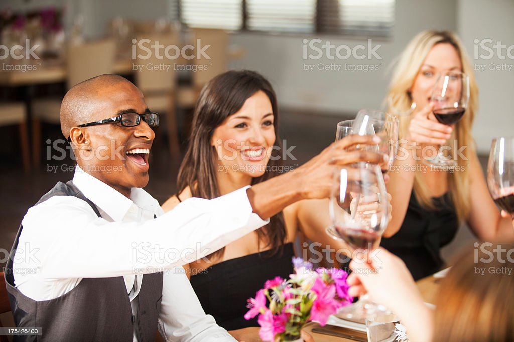 Diverse Friends Toasting Glasses royalty-free stock photo