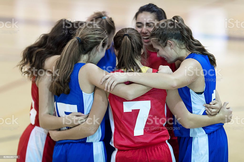 Diverse group of high school girls arms around each other stock photo