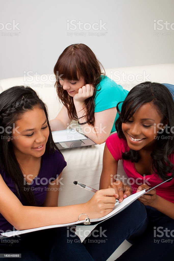 Diverse group of teenagers royalty-free stock photo