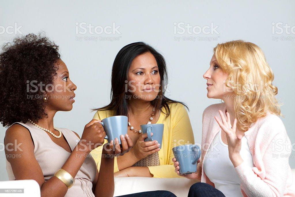 Diverse Group of Women Talking royalty-free stock photo