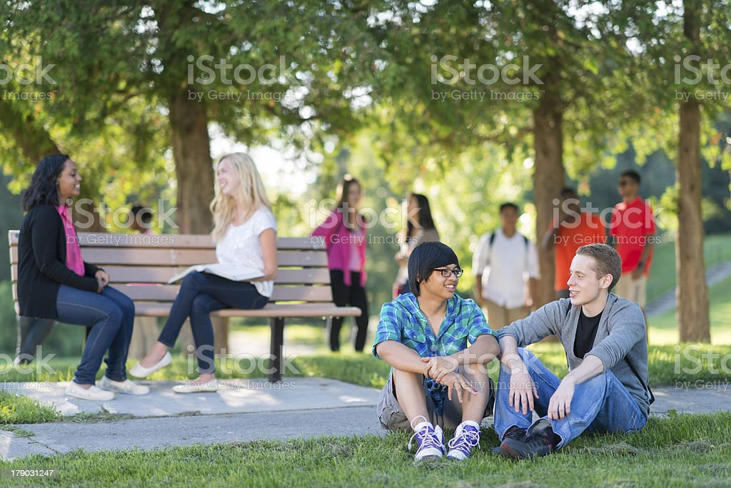 Diverse High School Students royalty-free stock photo