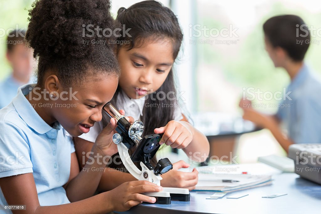 Diverse schoolgirls work together on science project stock photo