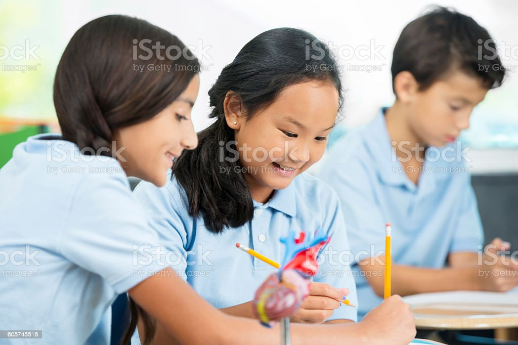 Diverse students working together on a science project in classroom stock photo
