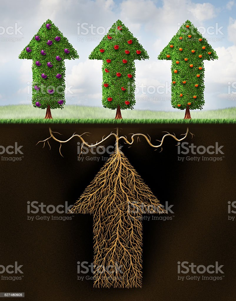 Diversified Investing stock photo