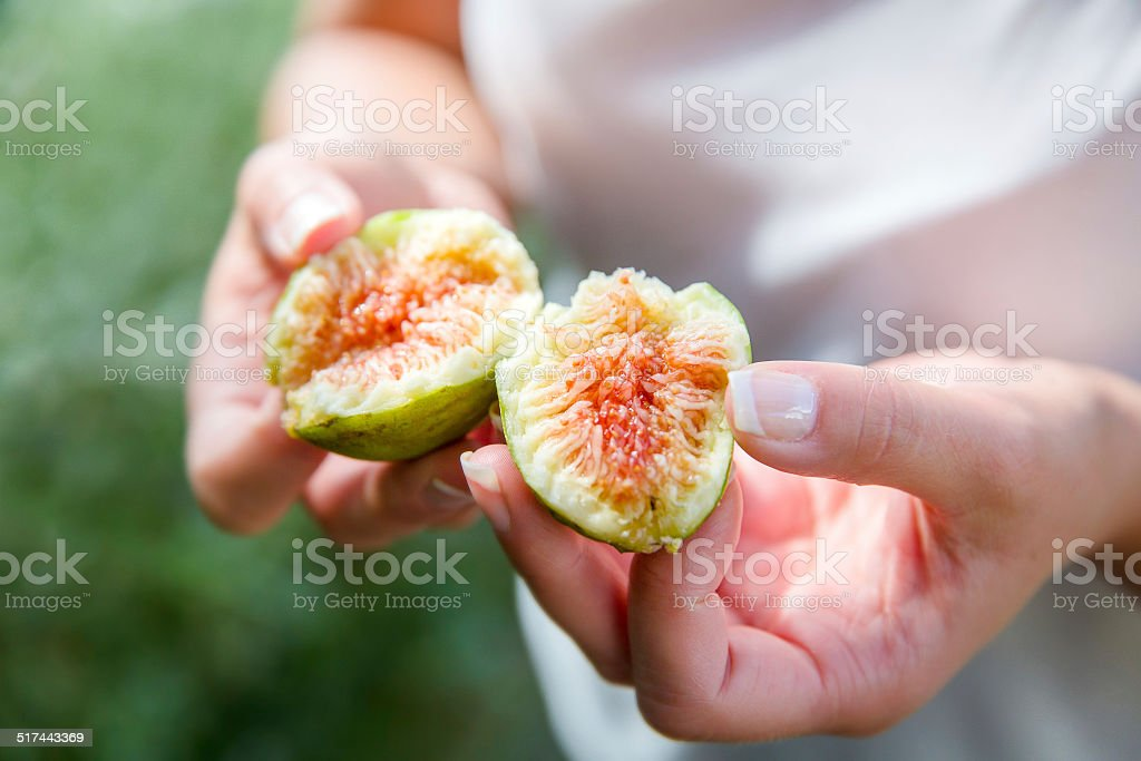 Divided fresh organic figs from the tree stock photo