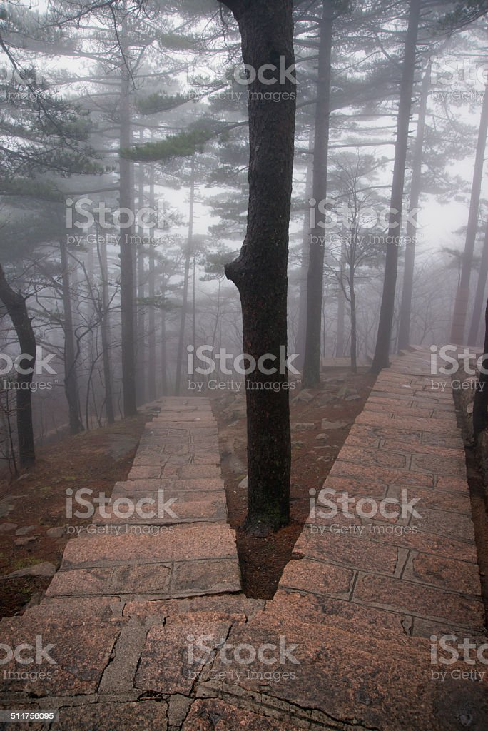 Divided pathway, Yellow Mountain, Mt. Huangshan stock photo