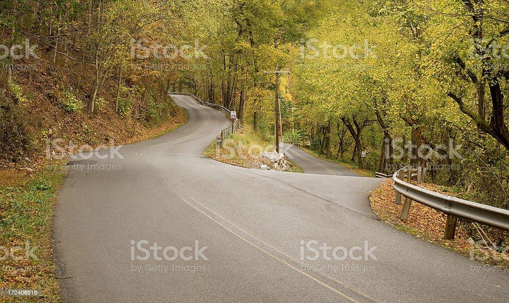 Divided Road royalty-free stock photo
