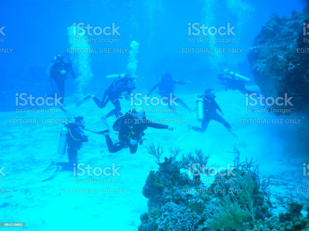 Diving group under water stock photo
