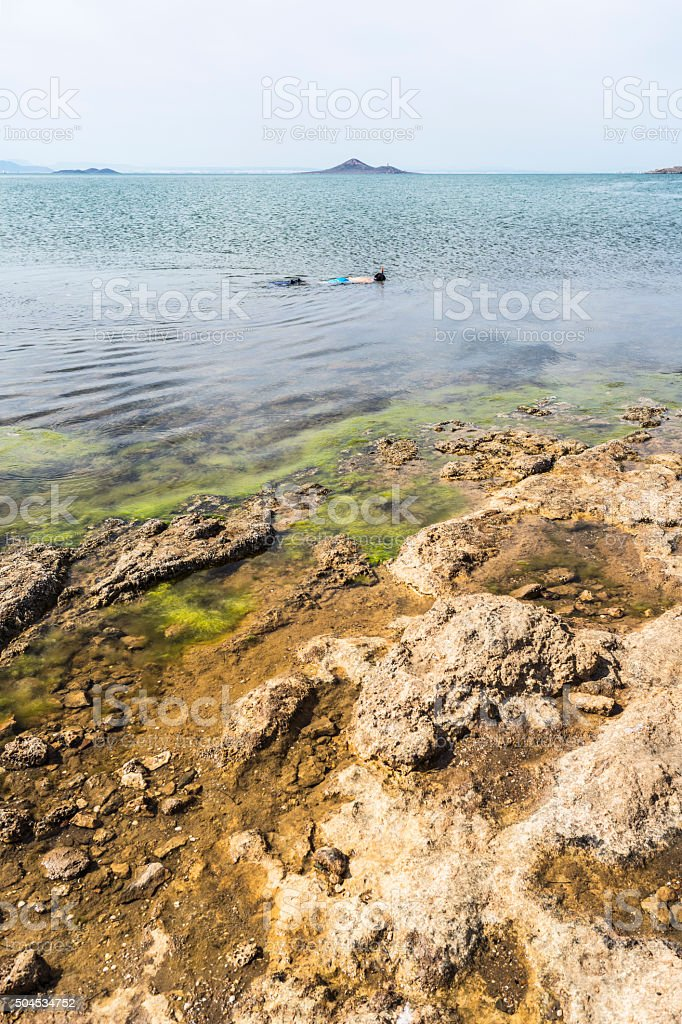 Diving in calm sea. stock photo