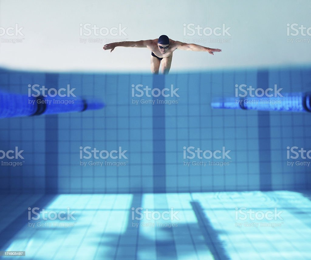Diving into the deep end royalty-free stock photo