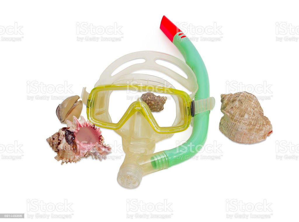 Diving mask and sea shells on a light background stock photo