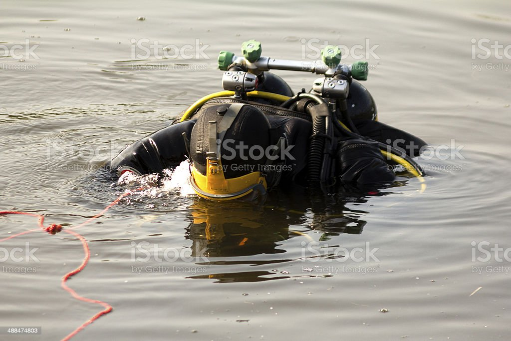 diving stock photo
