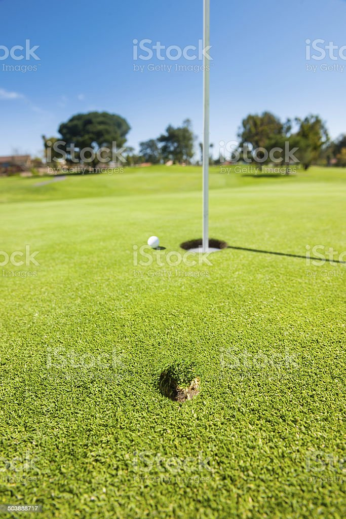 Divot And Golf Ball On The Greens stock photo