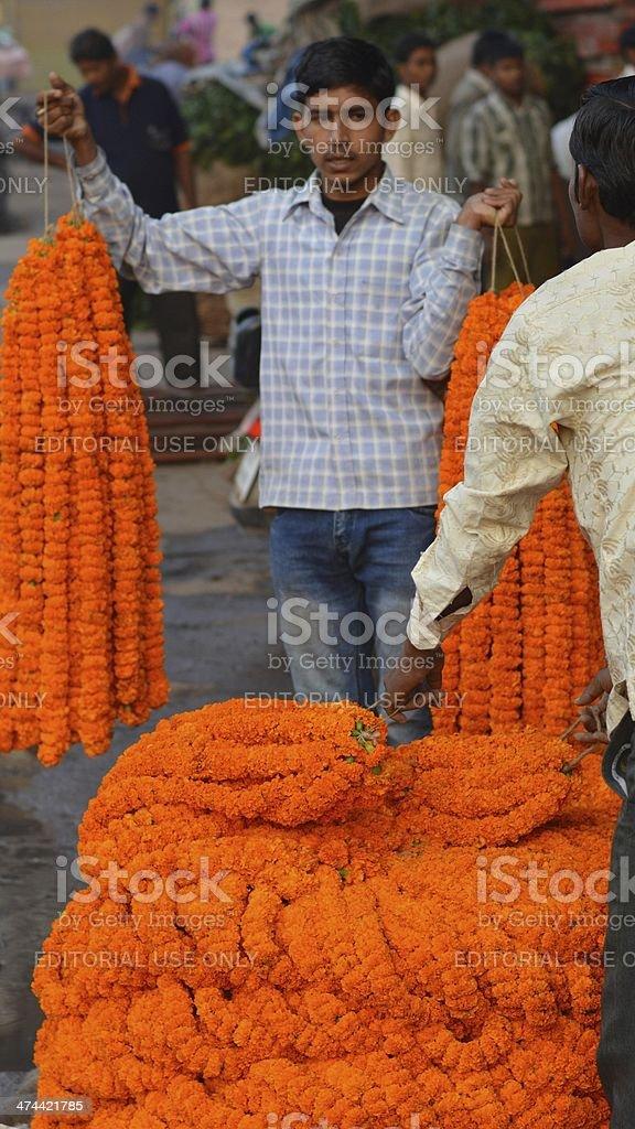 Diwali marigolds stock photo