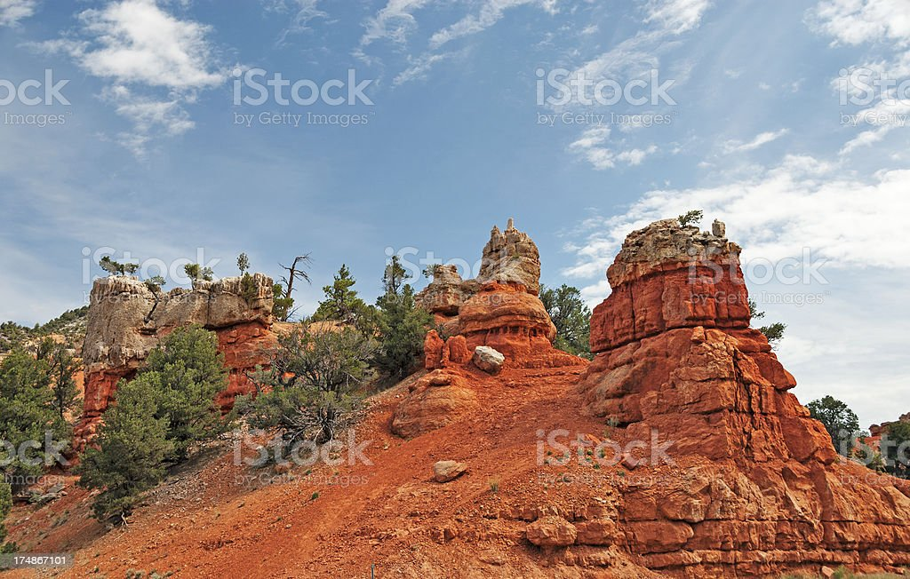 Dixie Forest Red Rocks stock photo