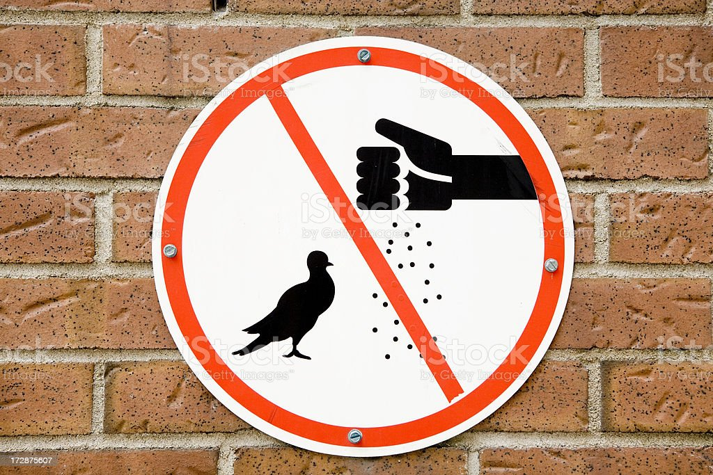 Do not feed the pigeons or birds royalty-free stock photo