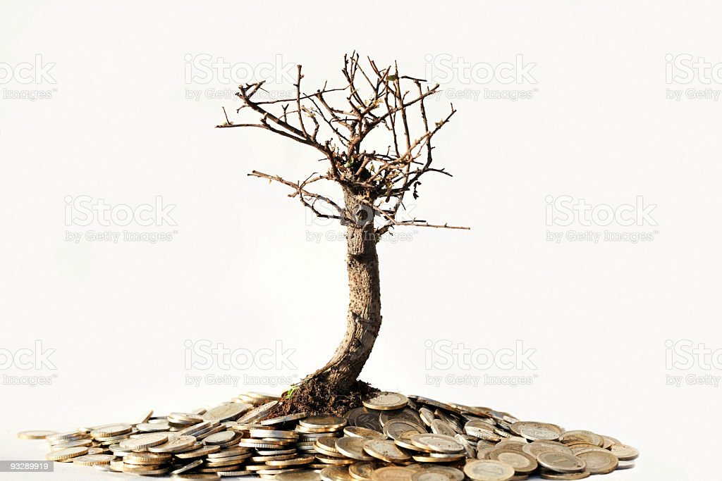 Do not Kill Nature for Money royalty-free stock photo