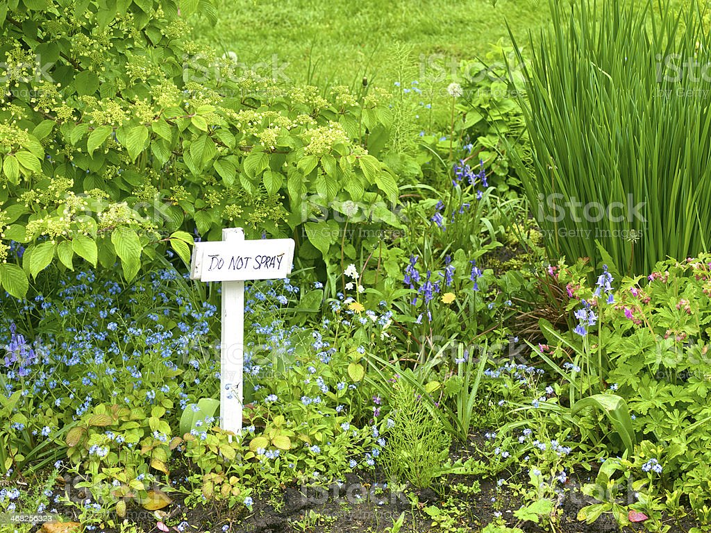 Weeds in flower beds spray - Do Not Spray Sign Garden Flowerbed Plants Weeds Royalty Free Stock Photo