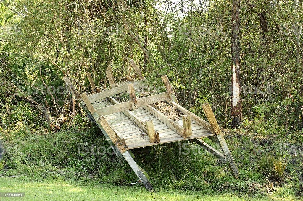 Dock in trees stock photo