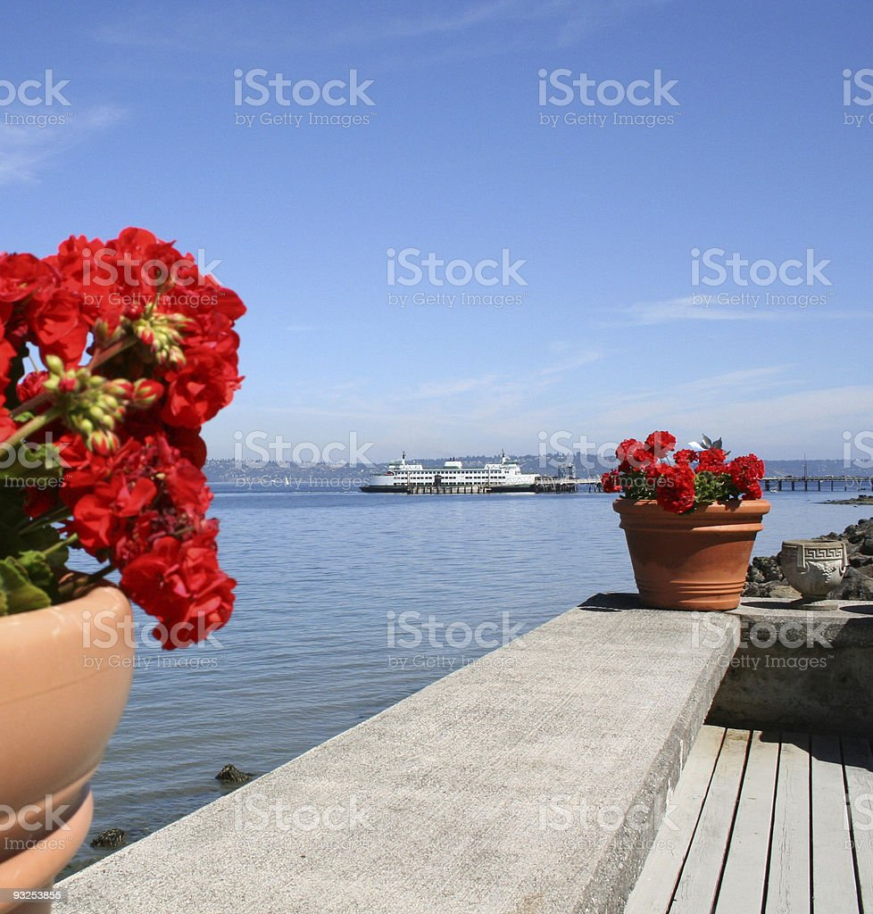 Docked Ferry Framed by Red Geraniums stock photo
