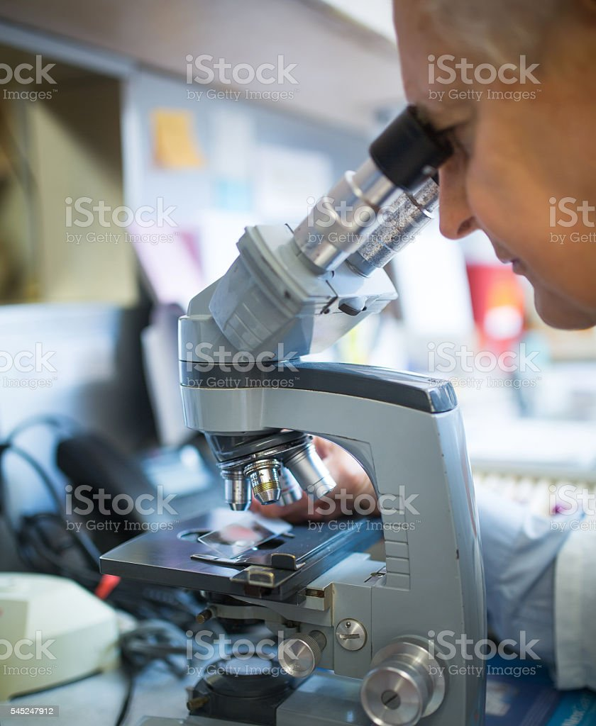 Doctor checking samples stock photo